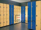 Gymnasium、Fitnessroom、Stadiumのための固体Phenolic HPL Wardrobe