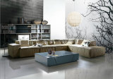 Mobília moderna italiana da sala de visitas
