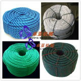 Riga di plastica fabbricazione della corda di PP/Pet che fa attrezzatura/impianti/macchina
