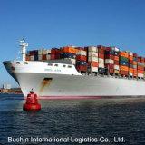 Spedizioniere di trasporto del trasporto marittimo dalla Cina a New York, Ny/Norfolk, Va/Oakland, Ca