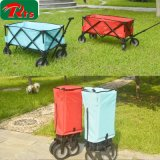 O carrinho de criança que de dobramento do vagão o carro elevado da paisagem pode se sentar pode encontrar-se carro Foldable leve do bebê