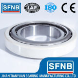Bearing de encargo Sizes Insulated Roller Bearing y Ball Bearing