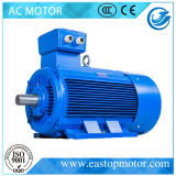 Motores eléctricos Y3 para mecánico con el oso de C&U