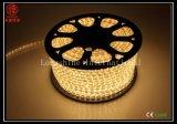 Indicatore luminoso impermeabile della corda di bassa tensione LED