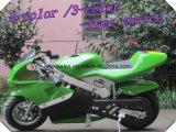 Mini Moto, Pocket Bikes 49CC 12 Color Tone puede elegir (ET-PR204)