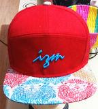 100% del algodón 5 o 6 gorra de béisbol bordada los paneles del deporte