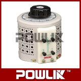 Regulador de tensão variável da alta qualidade (Tdgc-5kVA)
