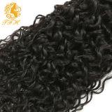 2016 выдвижение волос девственницы новой волны прибытия 7A-Grade курчавой Unprocessed индийское