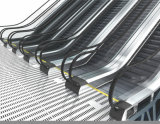 Escalator lourd public de DSK