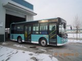 9m Diesel 31-50seats Interlokale Bus LHD/Rhd
