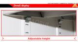 Stahlzapfen-Bildschirmanzeige-Regal konzipiert Metalbibliotheks-Zeitschriften-Zahnstange