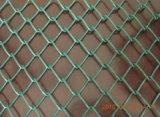 Горяч-Окунутая загородка звена цепи PVC Coated (W-GHW2)