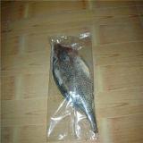 يتدفّق آليّة يجمّد فواكه البحر, سمكة [ورب مشن] مع [س] حامل شهادة