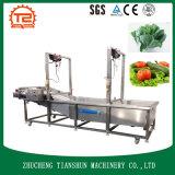 高いPreesureのスプレーの空気泡野菜洗濯機の野菜洗濯機Tsxq-60