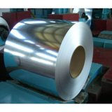 Hot DIP galvanizado Steel Strip Bobina de aço com 0.125-5.0mm