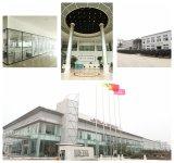 Essere-Barca elettrica del motorino di mobilità di prezzi poco costosi funzionali della Cina