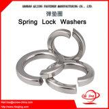 De Wasmachines van het Slot van de Lente van de Levering DIN127 van de Fabrikant van het Bevestigingsmiddel van China