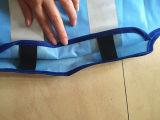 Veste reflexiva azul da equitação Running elevada do esporte da visibilidade
