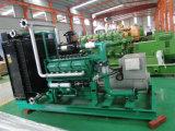 Shandong Lvhuan 생물 자원 가스 발전기 세트 200kw
