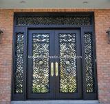 鉄が付いている美しいガラス前ドア