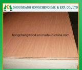 Madera contrachapada de lujo usada muebles incombustibles del grado HPL para el material de construcción con el certificado del Ce