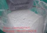 Poudre de stéroïdes d'Enanthate de testostérone pour le bâtiment de muscle