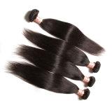 12-26 do cabelo brasileiro não processado do Virgin da polegada cabelo reto de seda Exetension