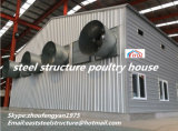 고품질 강철 가금은 중국에서 닭 농기구를 수용한다