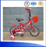 El fabricante de China embroma la bici y los coches