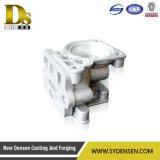 La fabbricazione dell'OEM di alluminio la pressofusione