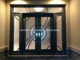 Porta material de aço da segurança do projeto popular com os Sidelights para a venda quente