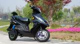 Scooter elétrico da venda quente 1000W E motocicleta para adultos