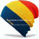 Kundenspezifische gestickte Ski-Hut-Kippenbeanie-Hut-gewellte Jungen-Schneeknit-acrylsauerschutzkappe