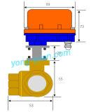 Dn15 3-Way Messing Gemotoriseerde Type van Kogelklep L/T (BS-898-15S)