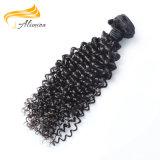 Großer auf lagerqualitätsjungfrau-Haar-Lieferanten-brasilianisches lockiges Jungfrau-Haar