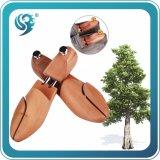 Promotonal que vende o esticador de madeira feito sob encomenda da árvore da sapata da fábrica