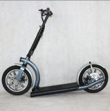 scooter électrique adulte plié 1201 de batterie au lithium 300W