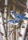 Картина EyOil - ткань вышивки птицы 1elet