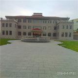 Tangshan Construciton를 위한 온화한 코일 SAE 1006b/1008b/1010b 5.5mm 철 철사