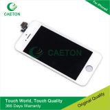 Heißer verkaufenmobile/Handy LCD-Touch Screen für iPhone 5g