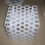 Bandeja de huevos de plástico / caja de huevo / Cartón de huevos