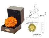 Ivenran ha conservato il fiore fresco del contenitore di regalo del Leo