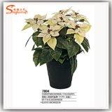 Flores artificiais da seda da decoração do Natal da fonte de China