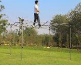 10X10FT bestes Qualitätsschwarz-Rahmen-Kabinendach-Zelt für Ereignis