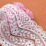 Testo fisso nero elastico del merletto della biancheria del merletto francese