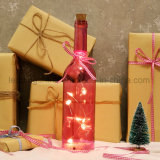 LEIDENE Lichte Fles voor de Decoratie van het Huis met binnen Vormen Cutie