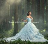 Blaue Ballkleider 3D blüht Tulle, das Brautkleider Z5004 Wedding ist