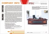 Tabela executiva (FEC2813)