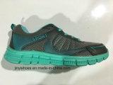 De nieuwe Schoenen van /Comfort van de Loopschoenen van Meer van de Kleur Meisje van de Vrouwen/de Schoenen van de Manier