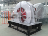 TのTdmkの大型の同期低速高圧ボールミルAC電気誘導三相モーターTdmk800-32/2600-800kw
